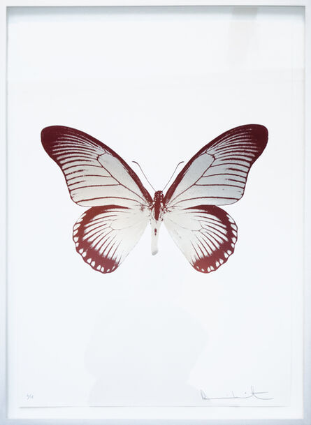 Damien Hirst, 'The Souls IV - Silver Gloss - Burgundy', 2010