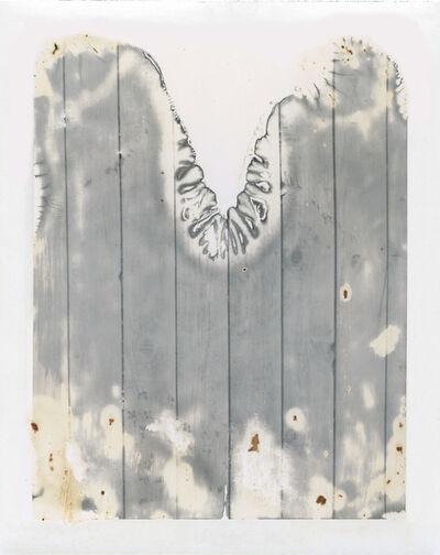 Eileen Quinlan, 'Boreds, 2015', 2015