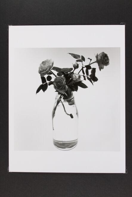 Phil-Hee Kong, 'Rose', 2015
