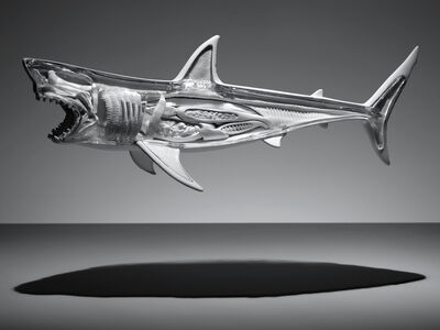 Omar Torres, 'SHARK', 2015
