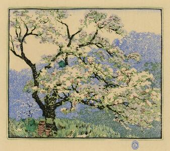 Gustave Baumann, 'Apple Blossoms', 1919