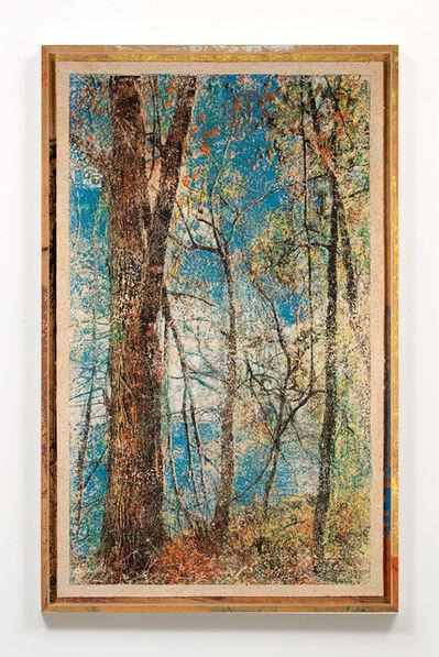 Matthew Brandt, 'Woodblock, Hudson River 1F', 2015