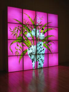 Ki Chang HAN, 'Roentgen's Garden', 2007