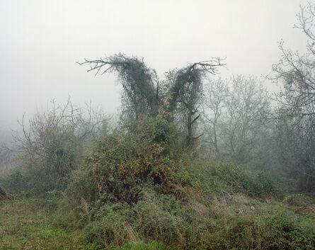 Nikos Markou, 'Evrostina-Corinthia', 2009