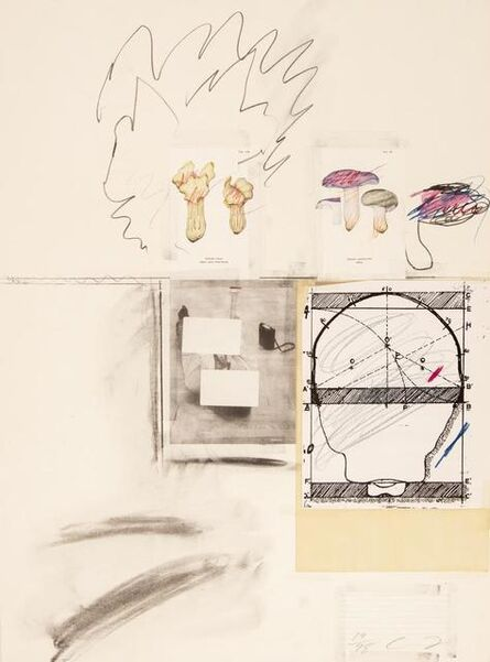 Cy Twombly, 'Mushrooms Iv. From: Natural History Part I', 1974