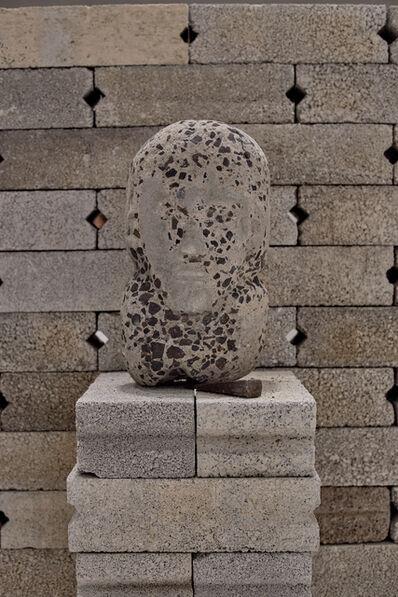 Diego Pérez, 'Prócer anónimo', 2015