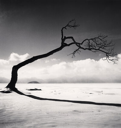 Michael Kenna, 'Kussharo Lake Tree, Study 10, Kotan, Hokkaido', 2005