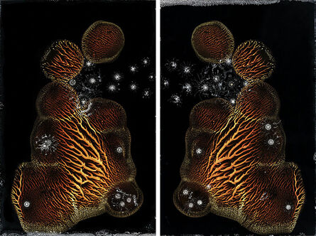 Michael Koerner, 'The God Cell #0882L-#0878R', 2020