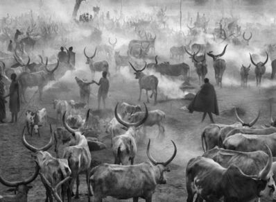 Sebastião Salgado, 'Dinka cattle camp of Amak. Southern Sudan.', 2006