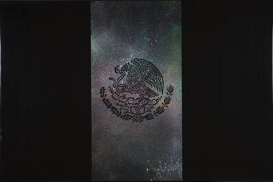 Rubén Ortiz Torres, 'Bandera Nebulosa', 2016