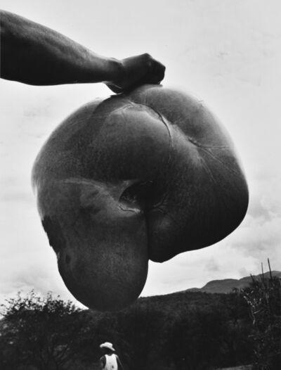 Graciela Iturbide, 'Matanza, La Mixteca, Oaxaca, Mexico', 1992