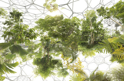 Michael Najjar, 'space garden', 2013
