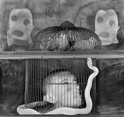 Roger Ballen, 'Caged', 2011