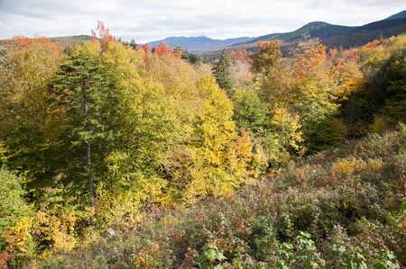 Jane Paradise, 'White Mountains, New Hampshire', 2009