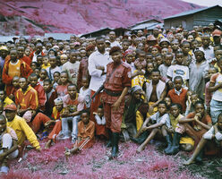 Richard Mosse, 'Tutsi Town', 2010