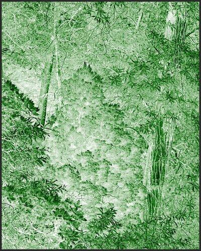 Clifford Ross, 'Harmonium IV', 2007