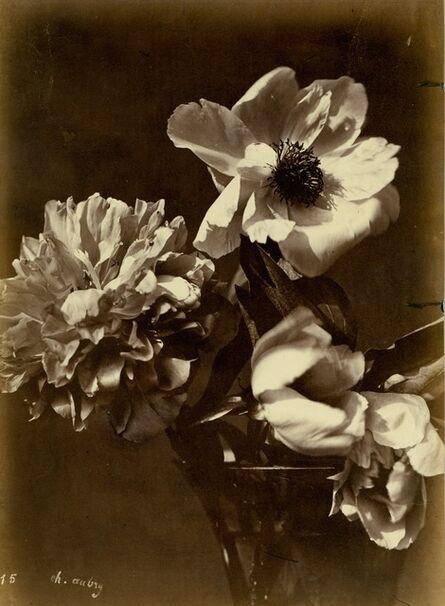 Charles Aubry, 'Flower Arrangement (#15)', ca. 1860