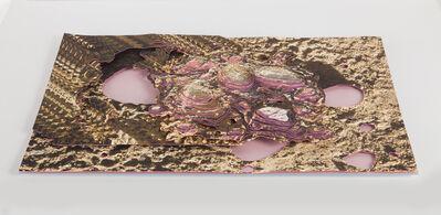 Rodrigo Torres, 'Geographic Misinformation System 18', 2015