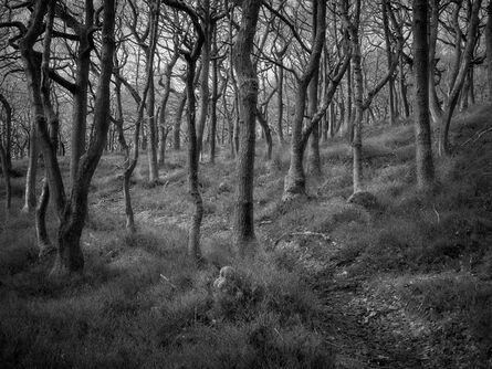 Jon Wyatt, 'Over Stowey, North Somerset', 2011