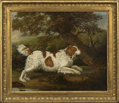 """Henry Bernard Chalon, '""""Quaile"""", an English spaniel in a wooded landscape'"""
