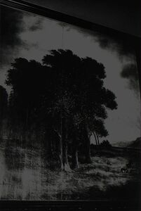 Paulo Nozolino, 'Berlin, Loaded Shine series', 2008-2013