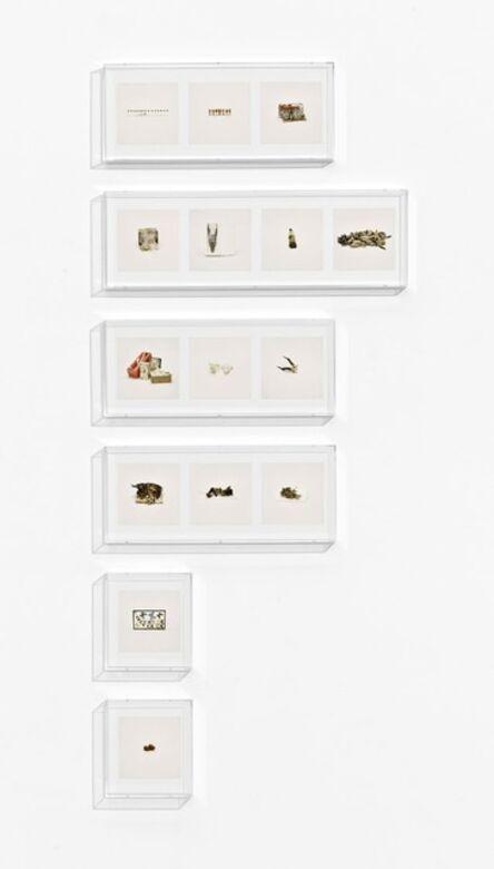 Taryn Simon, 'Animal Corpses (Prohibited), Animal Parts (Prohibited), Animal Skeletons (Prohibited), Animal Specimens (Prohibited), Butterflies (Prohibited), Snails (Prohibited)', 2010