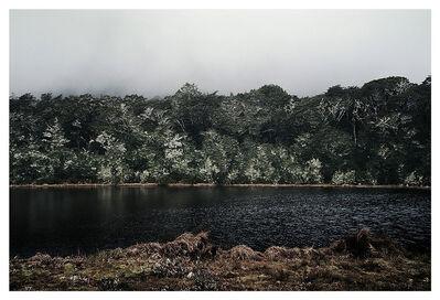 Bernhard Quade, 'Lewis Pass Forest | South Island | New Zealand', 2015