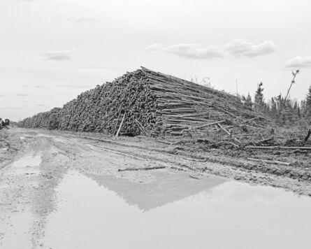 Denis Rioux, 'Untitled (logs II) /Sans titre (billots II)', 2021