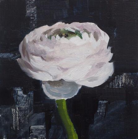 Jon Doran, 'Ranunculus Study', 2018