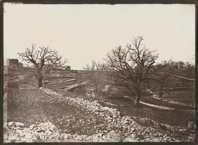 Charles Nègre, 'Chênes en Hiver (Oak Trees in Winter)', ca. 1852