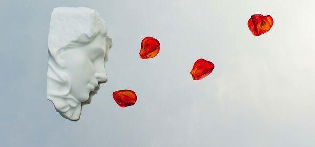 Michelangelo Galliani, 'Rose on the Mirror', 2018
