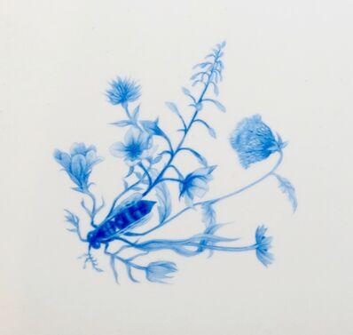 Zachari Logan, 'Specimen 39', 2016