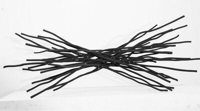 Shayne Dark, 'painted wood', 2013