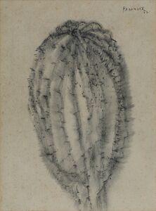 Akbar Padamsee, 'Cactus', 1982