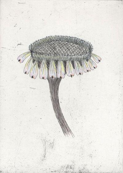 Kiki Smith, 'Untitled (from 'Escapades')', 2011