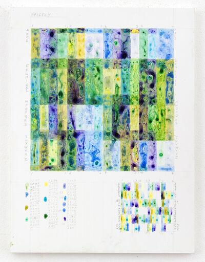 Leslie Roberts, 'BRIEFLY', 2017