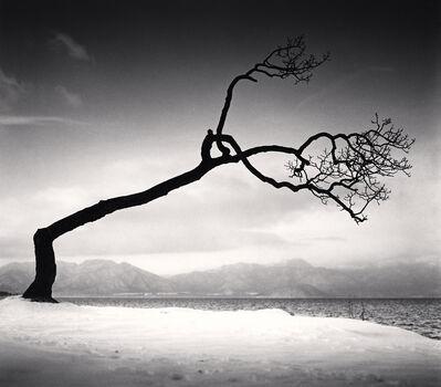 Michael Kenna, 'Kussharo Lake Tree, Study 16, Kotan, Hokkaido', 2009