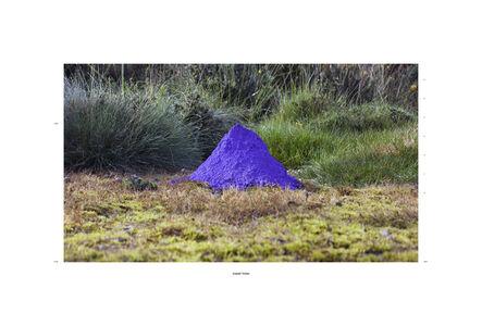 Irene Grau, 'Cobalt Violet 1520 ft. asi', 2015