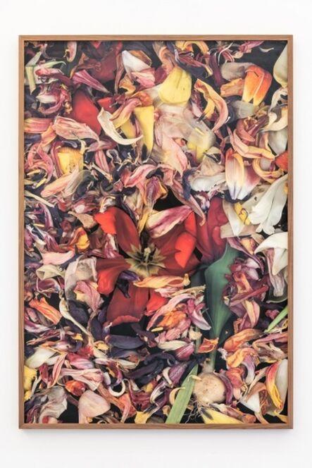 Luzia Simons, 'Stockage 124.05', 2018