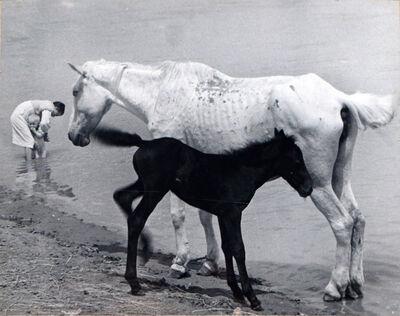 Boris Ignatovich, 'Motherhood', 1938