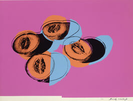 Andy Warhol, 'Space Fruit: Still Lifes, Cantaloupes II (FS II.198)', 1979