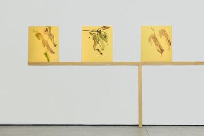 Gabriel Orozco, 'Suisai XXXIX', 2016