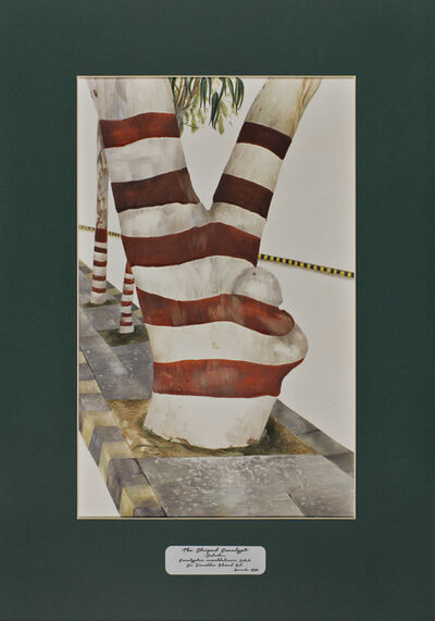 David Chalmers Alesworth, 'Trees of Pakistan - The Striped Eucalypt, Safeda', 2013-2014