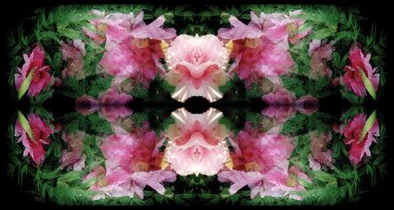 "Ellen Stagg, '""Pink Peonies Popping""', 2018"