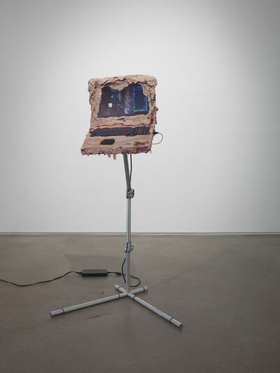Jon Rafman, 'Terra Derma', 2013