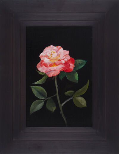 Michael Gregory, 'Untitled (Rose)', 2015