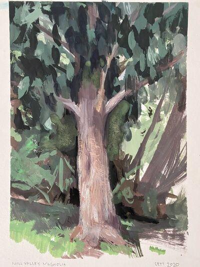 Ondrea Vicklund, 'Mill Valley Magnolia', 2020