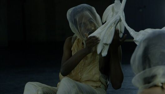 Naufus Ramírez-Figueroa, 'Linneaus in Tenebris', 2017