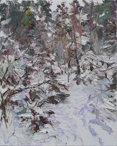 Ulrich Gleiter, 'Heavy Snow, Karelia', 2017