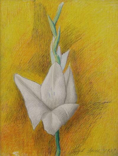 Joseph Stella, 'Untitled Flower', 1937